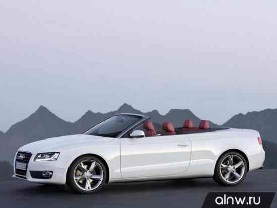 Каталог запасных частей Audi A5 I Кабриолет