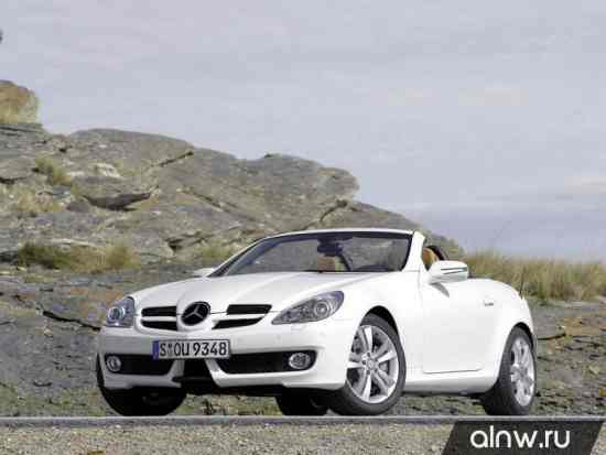 Mercedes-Benz SLK-klasse II (R171) Родстер